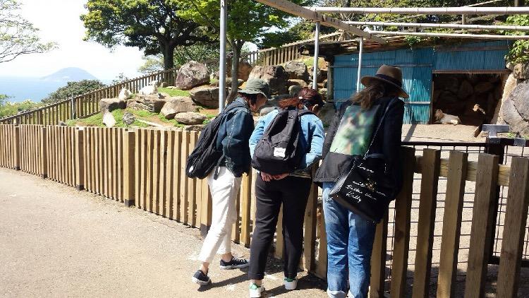 能古島の動物たち