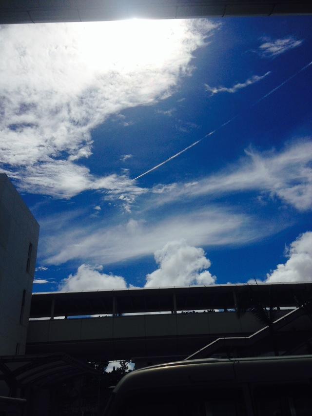 初の沖縄へ行って参りました